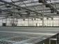 供应苗床网、养花养苗网、镀锌温室苗床钢丝网、植网床、花架网-亿久围栏网